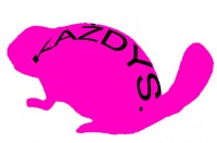 Logo The Każdys