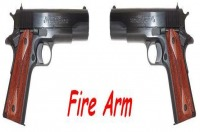 Logo Fire Arm
